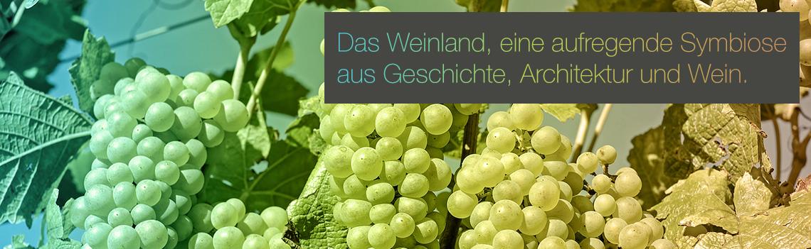 Das Weinland, eine aufregende Symbiose von Geschichte, Architektur und Wein